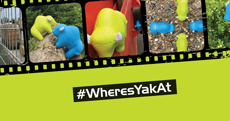 #WheresYakAt